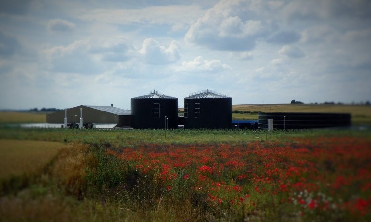 Biogas buses