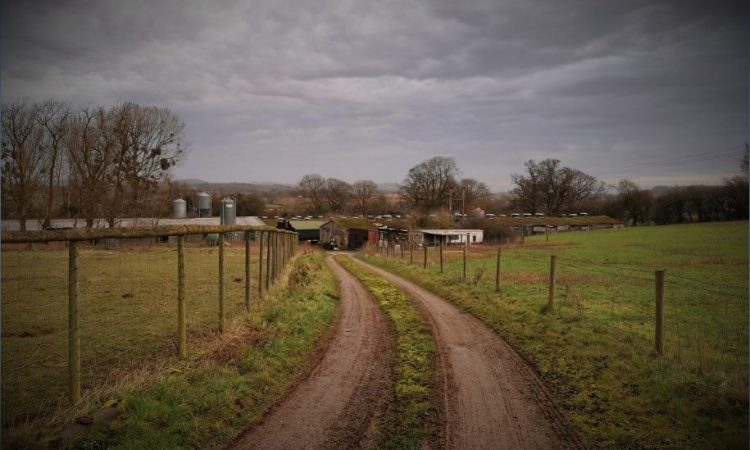 Odour control system for an abattoir at Green Hill Farm, Dymock by Redmore Environmental